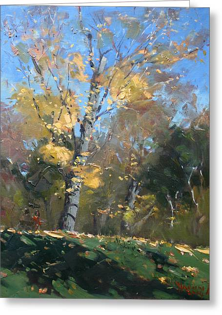 Three Trees Greeting Cards - At the Park Greeting Card by Ylli Haruni