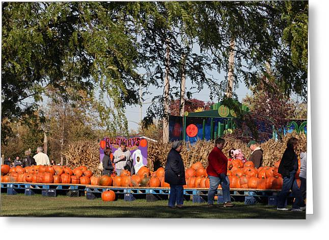 Kkphoto1 Greeting Cards - At The Pumpkin Farm Greeting Card by Kay Novy