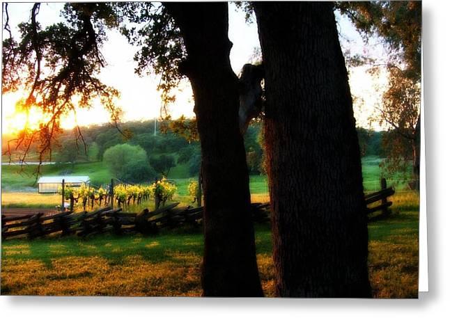 Pastoral Vineyards Digital Art Greeting Cards - At the Ranch Greeting Card by Rich Ackerman