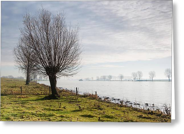 Fall Scenes Greeting Cards - At the river bank early in the morning Greeting Card by Ruud Morijn
