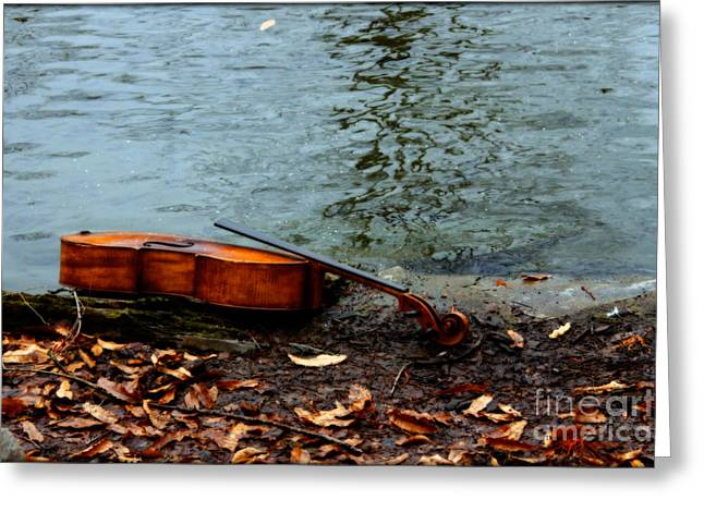 Outdoor Photography Digital Greeting Cards - At the Rivers Edge  Greeting Card by Steven  Digman