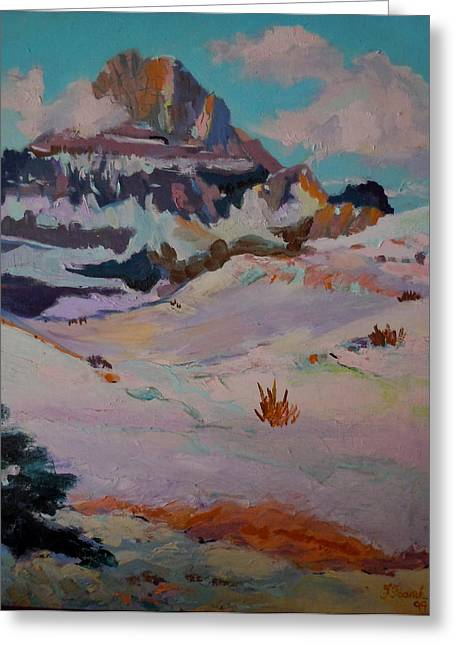 At The Top - Glacier National Park Greeting Card by Francine Frank