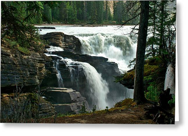 Jeremy Greeting Cards - Athabasca Falls Greeting Card by Jeremy Rhoades