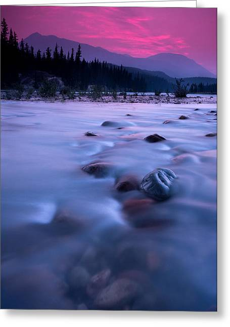 Sony Greeting Cards - Athabasca Sunset Greeting Card by Cale Best