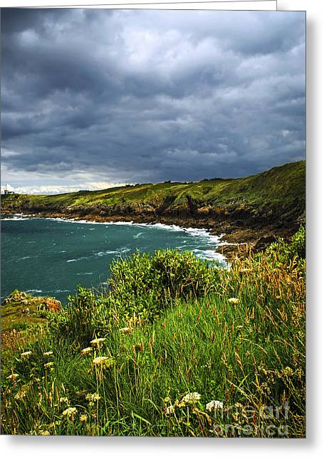 Summer Storm Greeting Cards - Atlantic coast in Brittany Greeting Card by Elena Elisseeva