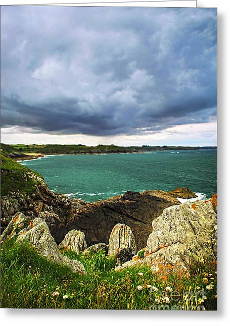 Ocean Landscape Greeting Cards - Atlantic coastline in Brittany Greeting Card by Elena Elisseeva