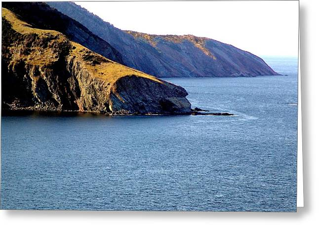 Atlantic Headlands Greeting Card by George Cousins