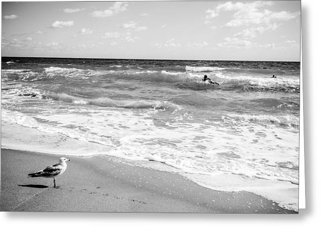 Atlantic Beaches Greeting Cards - Atlantic Ocean in Black and White Greeting Card by Anthony Doudt