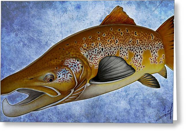Fly Fishing Print Greeting Cards - Atlantic Salmon Greeting Card by Nick Laferriere