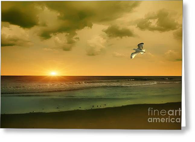 York Beach Greeting Cards - Atlantic Shoreline Greeting Card by Tom York Images