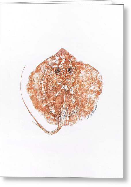 Gyotaku Greeting Cards - Atlantic Stingray Greeting Card by Nancy Gorr