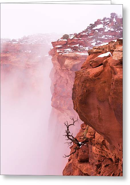 Atop Canyonlands Greeting Card by Chad Dutson