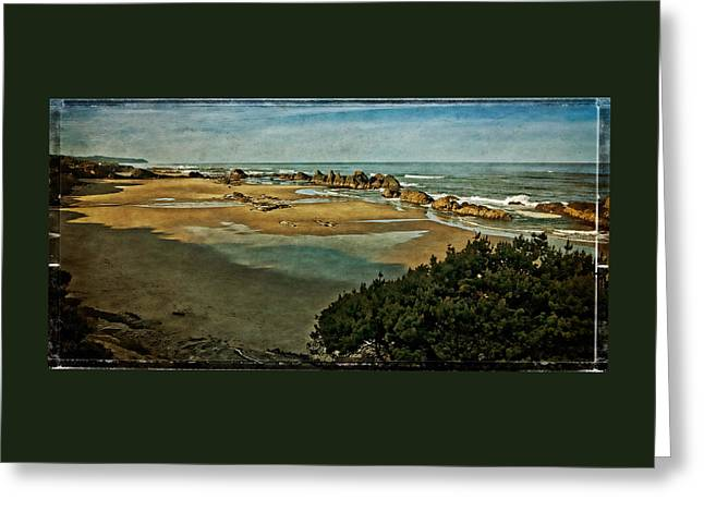 Oregon Coast Greeting Cards - Atop Seal Rock Beach Greeting Card by Thom Zehrfeld