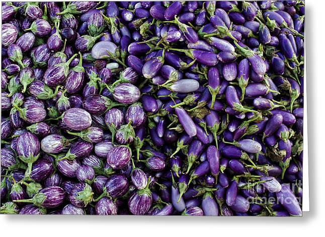 Lilac Greeting Cards - Aubergines Greeting Card by Tim Gainey