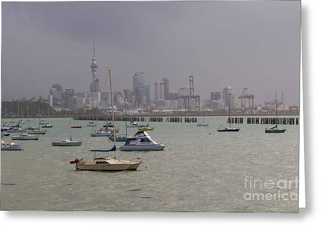 Ocean Landscape Greeting Cards - Auckland New Zealand Greeting Card by William H. Mullins