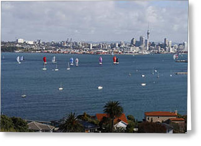 Blue Sailboats Greeting Cards - Auckland NZ Greeting Card by Les Cunliffe
