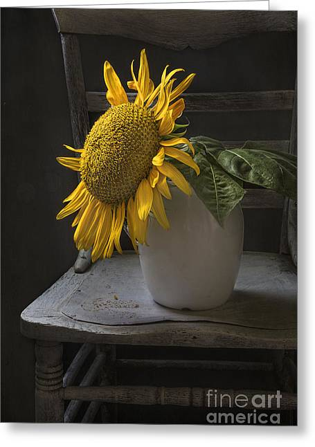 Interior Still Life Photographs Greeting Cards - August Greeting Card by Elena Nosyreva
