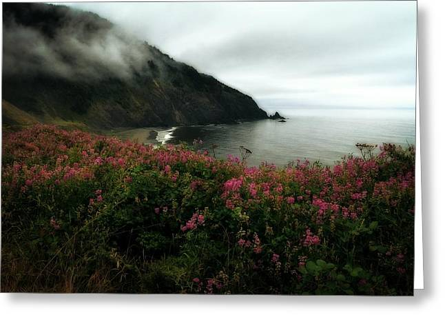 Foggy Beach Greeting Cards - August in Oregon Greeting Card by Michelle Calkins