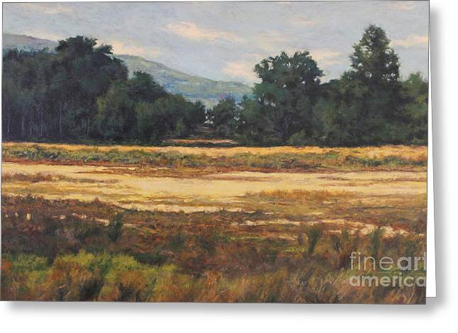 Gregory Arnett Paintings Greeting Cards - August Meadow Greeting Card by Gregory Arnett
