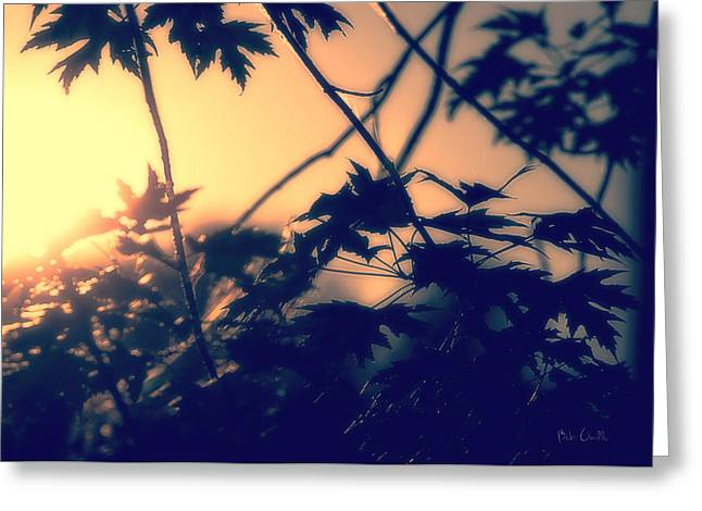 Heavenly Sunset Greeting Cards - August Memories Greeting Card by Bob Orsillo