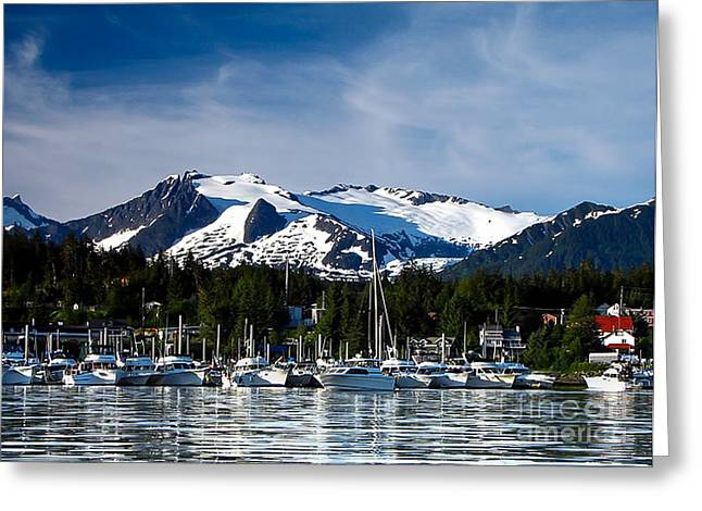 Southeast Alaska Greeting Cards - Auke Bay Marina Greeting Card by Robert Bales