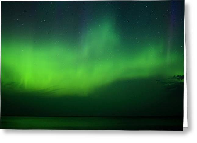 Agate Beach Greeting Cards - Aurora at Hunters Point Greeting Card by Dale Niesen