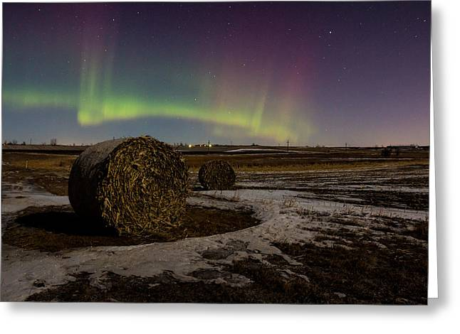 Hay Bale Greeting Cards - Aurora Bales Greeting Card by Aaron J Groen