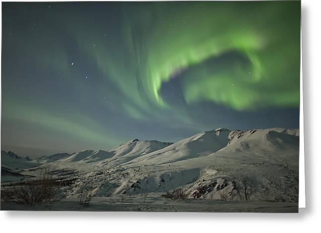 Tombstone Territorial Park Greeting Cards - Aurora Borealis Dances Greeting Card by Robert Postma