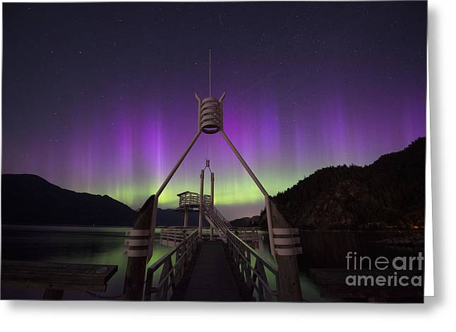Porteau Cove Greeting Cards - Aurora Borealis in Southern British Columbia Canada Greeting Card by Armelle Troussard