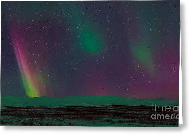 Snowy Night Night Greeting Cards - Aurora Borealis, Lapland, Sweden Greeting Card by Babak Tafreshi, Twan