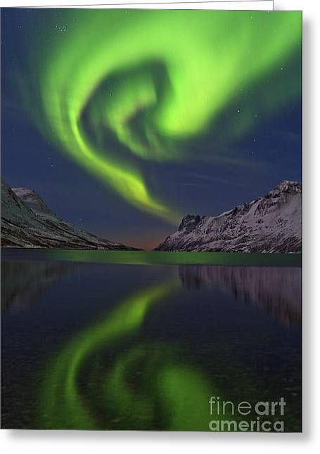 Snowy Night Greeting Cards - Aurora Borealis, Norway Greeting Card by Babak Tafreshi, Twan