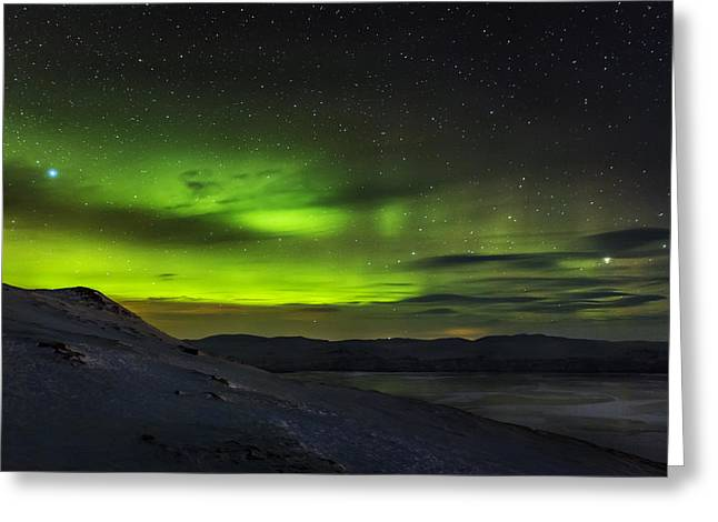 Temperature Greeting Cards - Aurora Borealis Or Northern Lights Seen Greeting Card by Panoramic Images