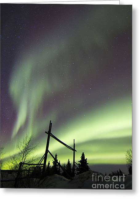Winter Night Greeting Cards - Aurora Borealis Over A Ranch Greeting Card by Joseph Bradley