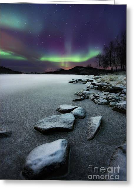 Illuminated Greeting Cards - Aurora Borealis Over Sandvannet Lake Greeting Card by Arild Heitmann