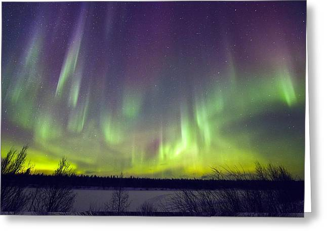 Discharging Greeting Cards - Aurora borealis Greeting Card by Science Photo Library