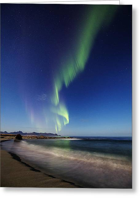 Astrophoto Greeting Cards - Aurora by the beach Greeting Card by Frank Olsen