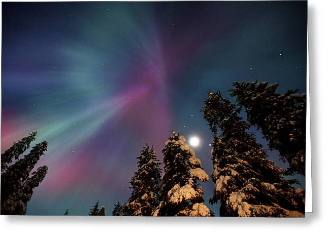 Beautiful Creek Greeting Cards - Aurora Corona & Moon Over Crow Creek Sc Greeting Card by Daryl Pederson