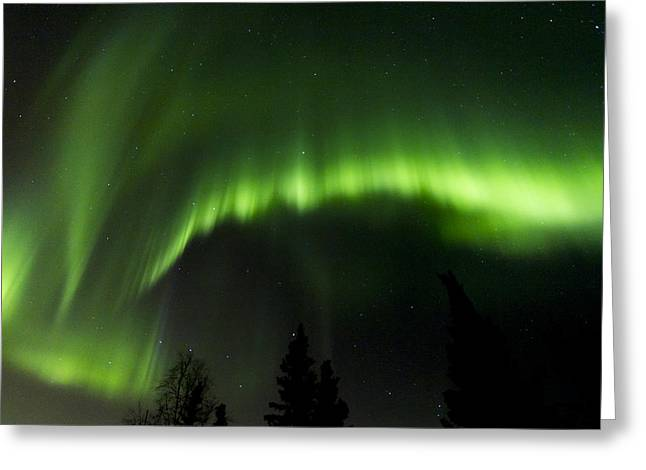 Nature Center Greeting Cards - Aurora Scorch Greeting Card by Kyle Lavey