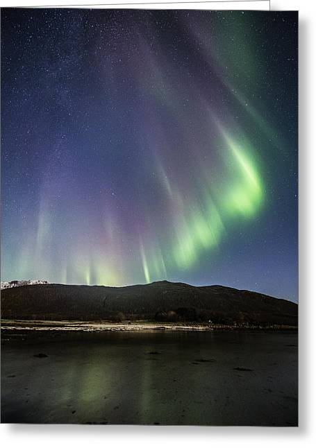 Astrophoto Greeting Cards - Auroras and stars Greeting Card by Frank Olsen