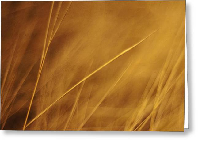 Abstractions Photographs Greeting Cards - Aurum Greeting Card by Priska Wettstein