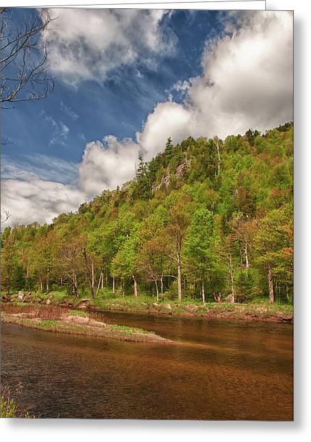 Geology Photographs Greeting Cards - AuSable River 5494 Greeting Card by Guy Whiteley