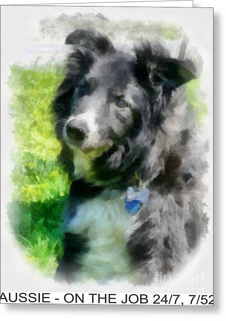 Recently Sold -  - Working Dog Greeting Cards - Aussie Dog Poster Greeting Card by Betsy Cotton