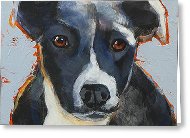 Cattle Dog Paintings Greeting Cards - Aussie Greeting Card by Mary Medrano