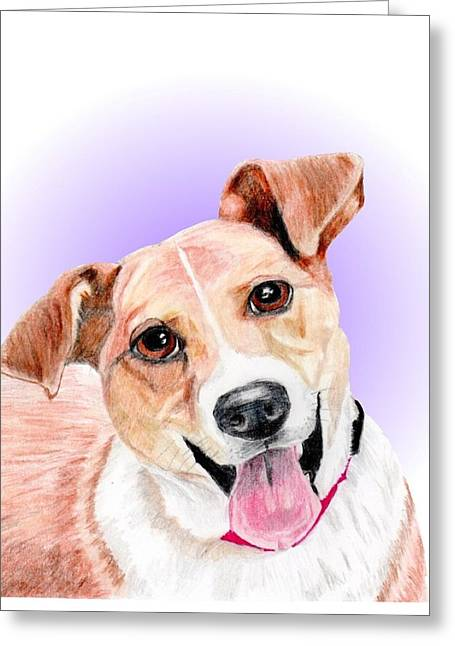 White Terrier Mixed Media Greeting Cards - Austin former shelter sweetie Greeting Card by Dave Anderson