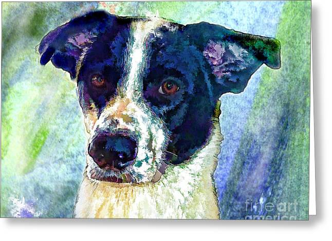 Puppy Digital Art Greeting Cards - Austin Greeting Card by Robin  Waters