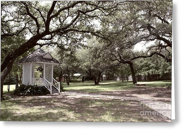 Austin Texas Southern Garden - Luther Fine Art Greeting Card by Luther  Fine  Art