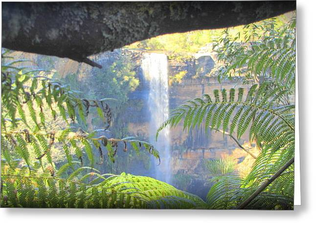 The Followers Greeting Cards - Australia Fritroy Falls Greeting Card by Henry Adams