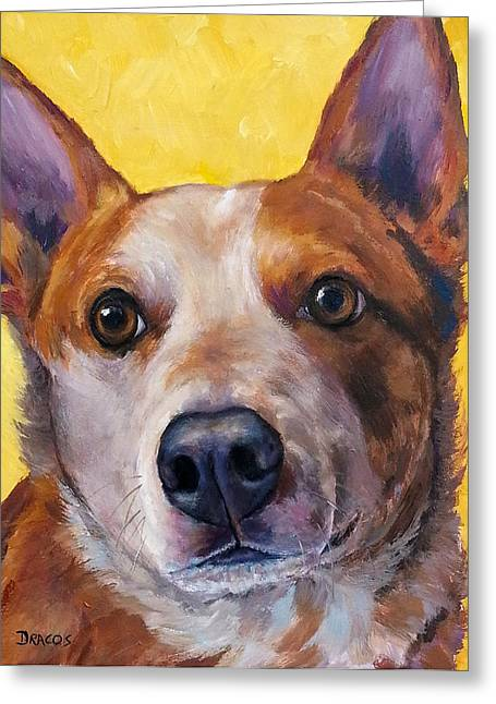Australian Cattle Dog Greeting Cards - Australian cattle dog red heeler on yellow Greeting Card by Dottie Dracos