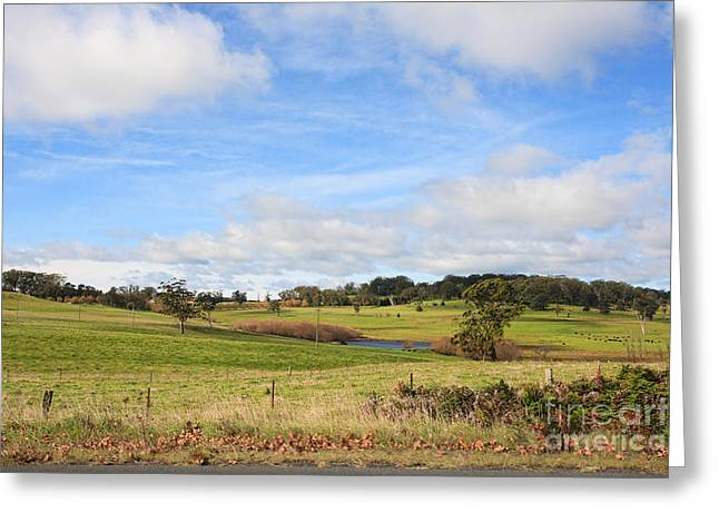 Healthy Pastels Greeting Cards - Australian Countryside Cambewarra NSW  Greeting Card by Leah-Anne Thompson