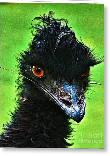 Australian Emu Greeting Card by Blair Stuart